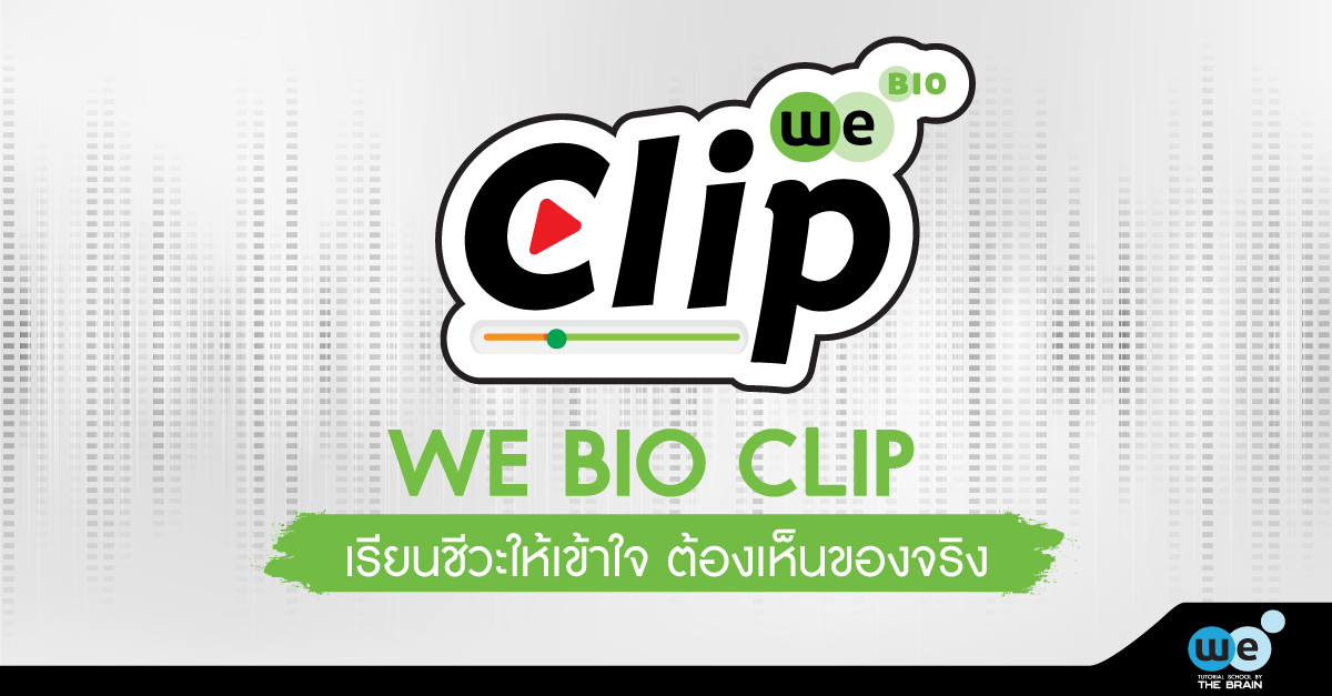 WE-BIO-CILP