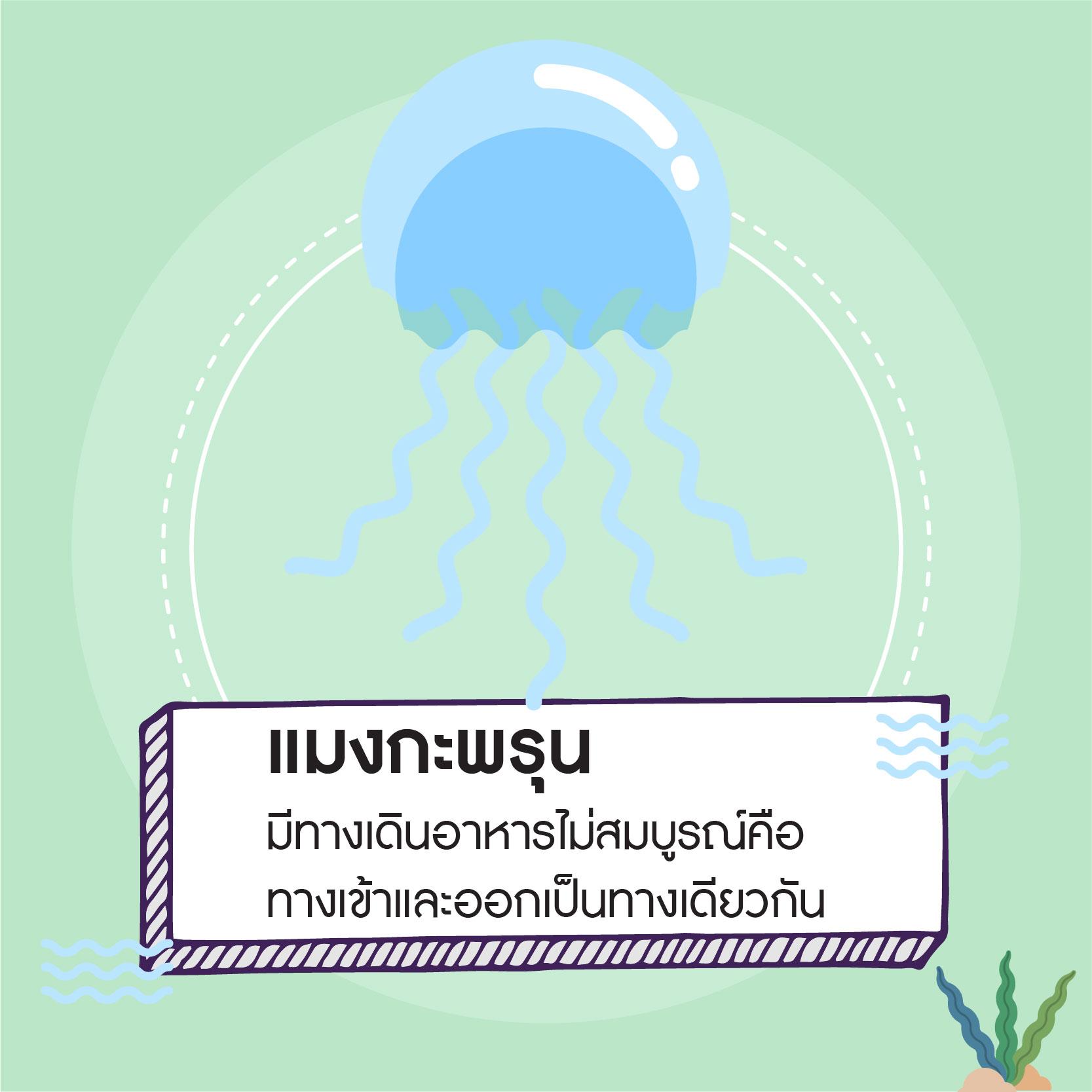 info ระบบย่อย-05